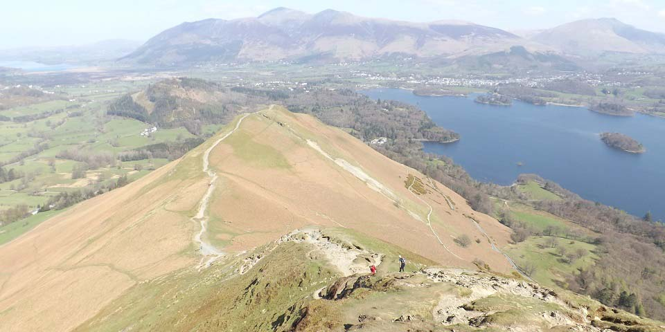 Cat Bells Portinscale image