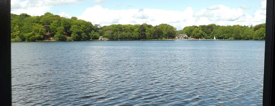Talkin Tarn Bird Viewing image